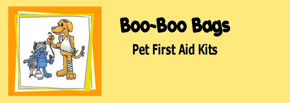 Boo Boo Bags Header Yellow Background with framed logo